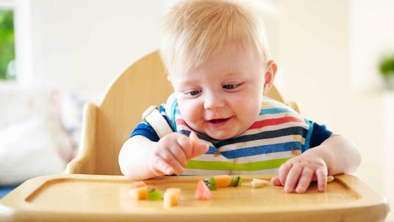 10 itens para ajudar na introdução alimentar do seu bebê